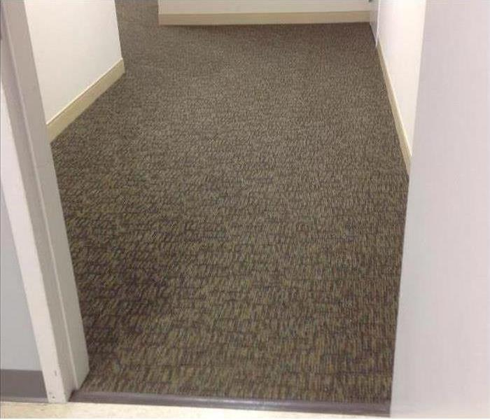 Clean carpet and restored hallway